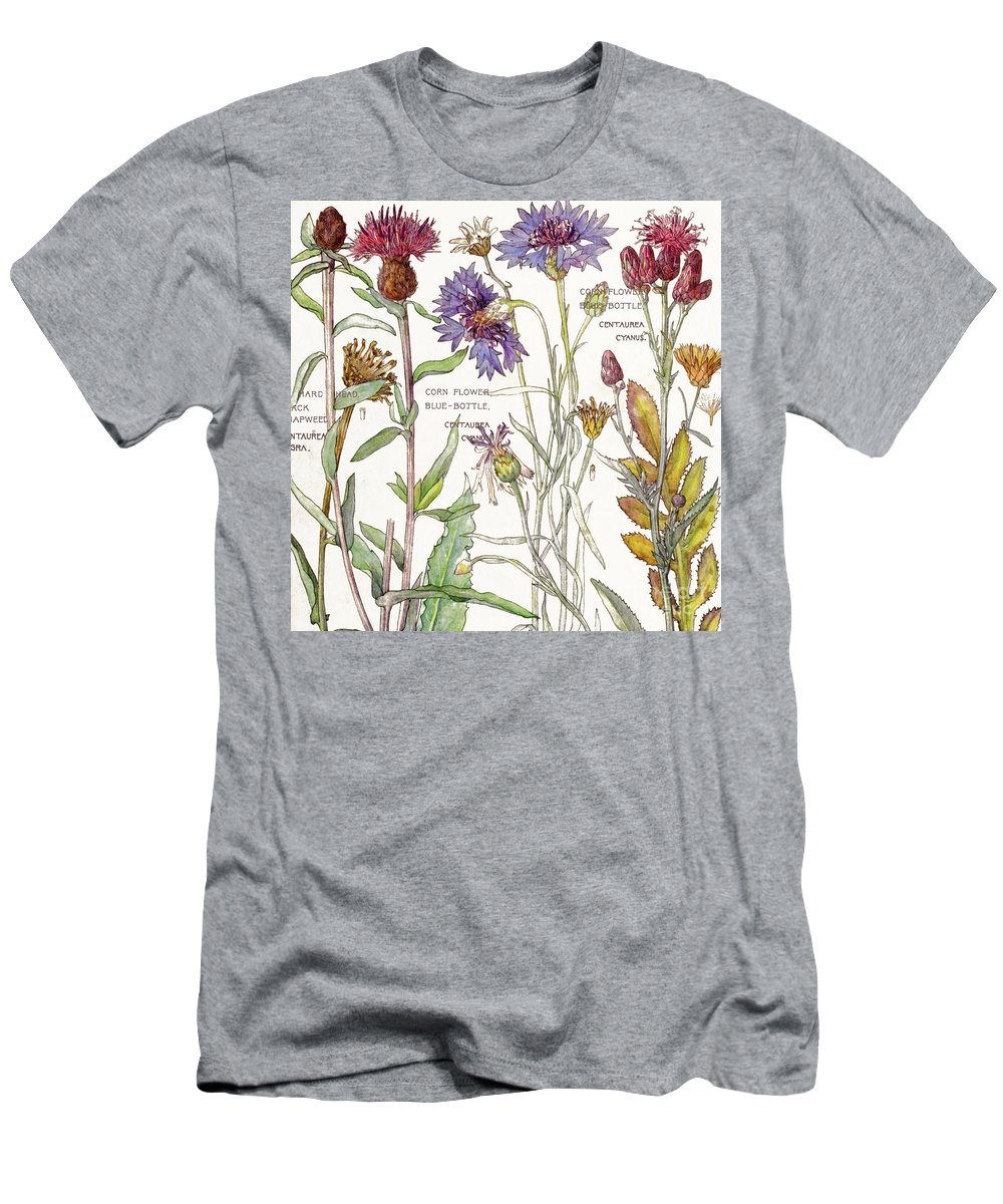 Flowers Men's T-Shirt (Athletic Fit) featuring the painting Ambrosia IIi by Mindy Sommers