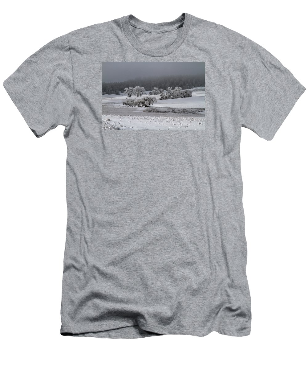 Winter T-Shirt featuring the photograph An Affair Of Cottonwoods by Alana Thrower