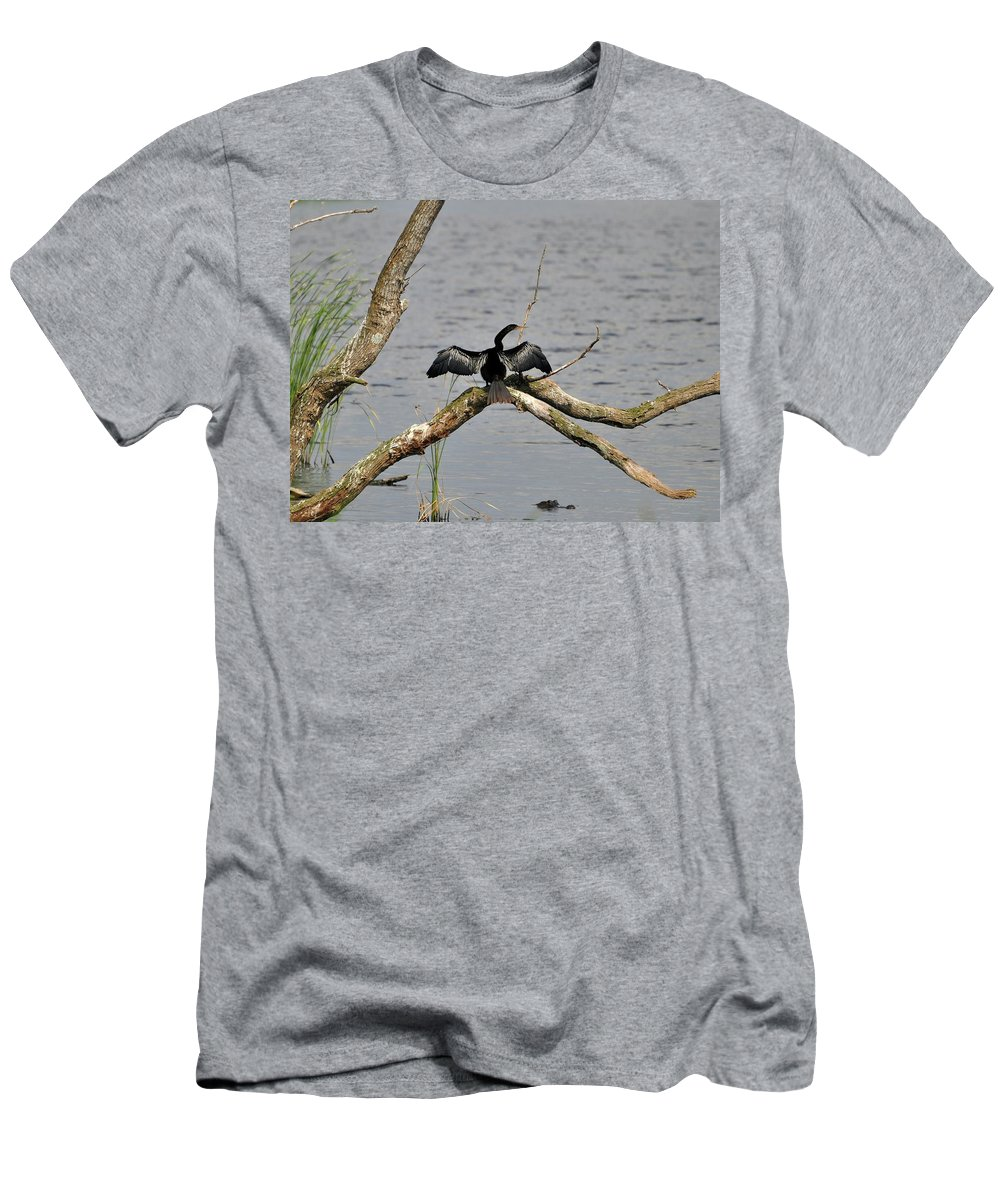Anhinga Men's T-Shirt (Athletic Fit) featuring the photograph Anhinga And Alligator by Al Powell Photography USA