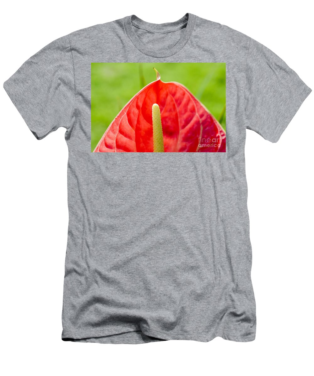 83-pfs0172 Men's T-Shirt (Athletic Fit) featuring the photograph Anthurium Close-up by Ray Laskowitz - Printscapes