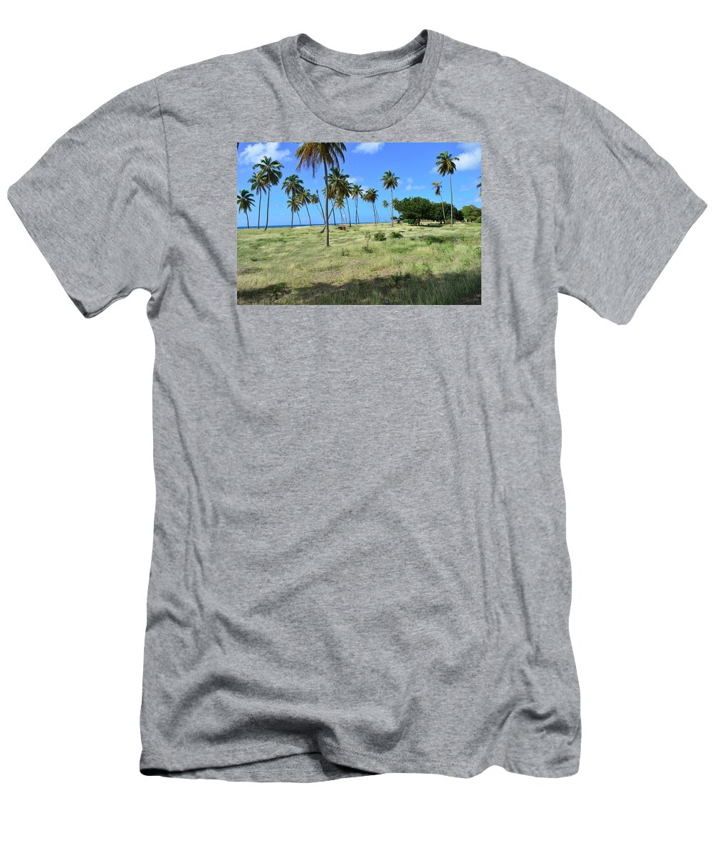 Palm Trees Men's T-Shirt (Athletic Fit) featuring the photograph Antiguan by Vivian Bird
