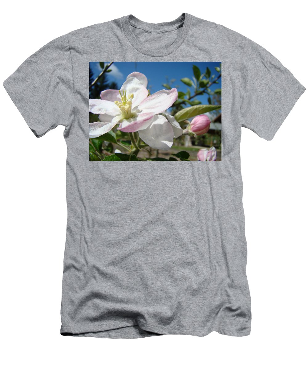 Apple Men's T-Shirt (Athletic Fit) featuring the photograph Apple Blossom Art Prints Spring Blue Sky Baslee Troutman by Baslee Troutman