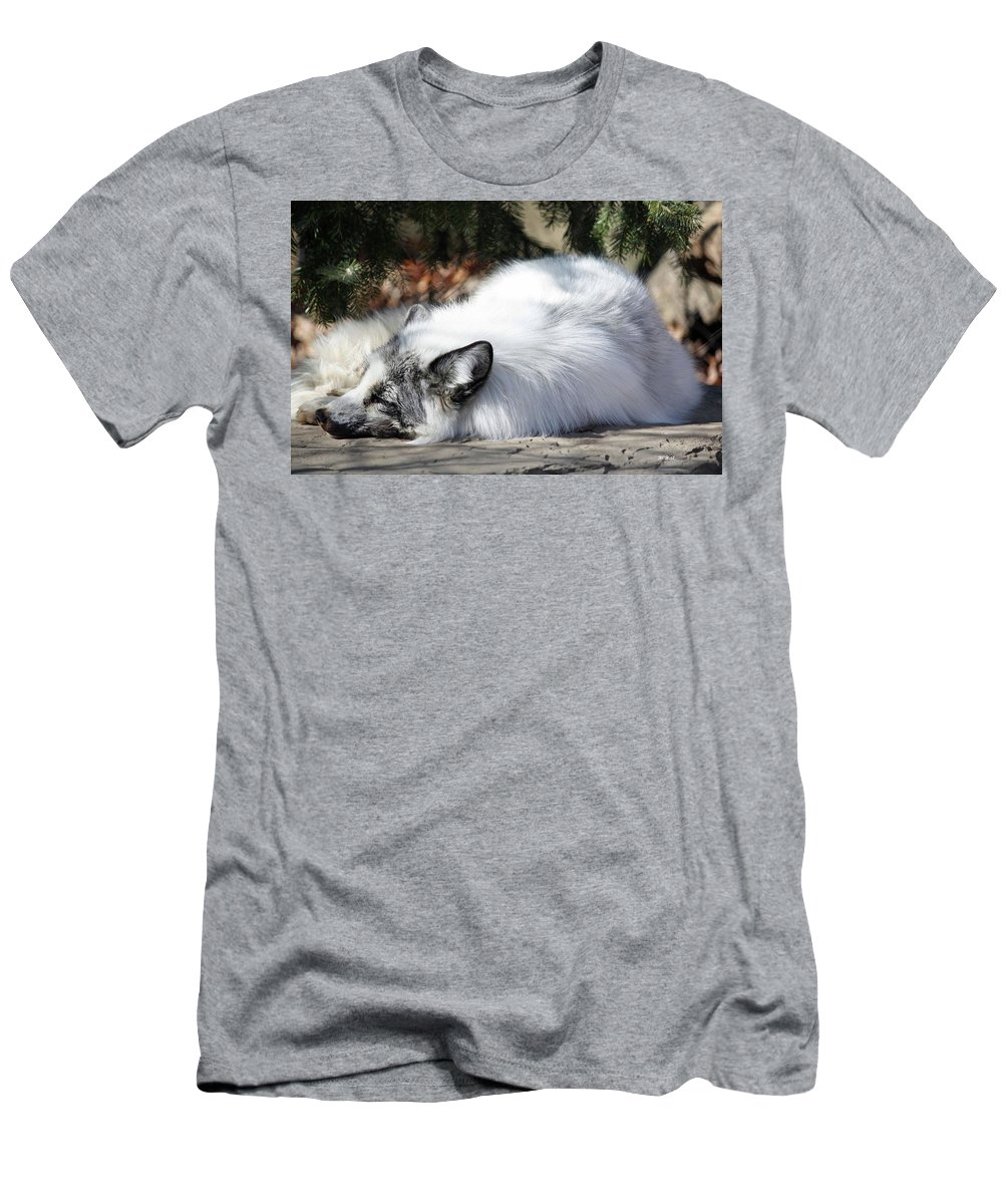 Maryland Men's T-Shirt (Athletic Fit) featuring the photograph Arctic Fox by Ronald Reid