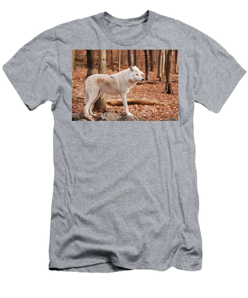 Wolf Men's T-Shirt (Athletic Fit) featuring the photograph Are You Talking To Me by Lori Tambakis