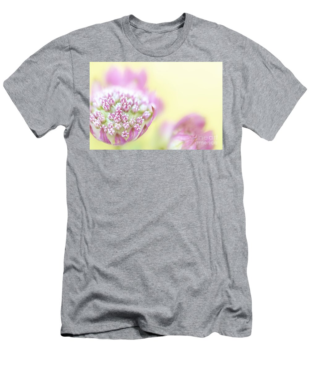 Astrantia Major Rubra. Men's T-Shirt (Athletic Fit) featuring the photograph Astrantia by Martin Williams
