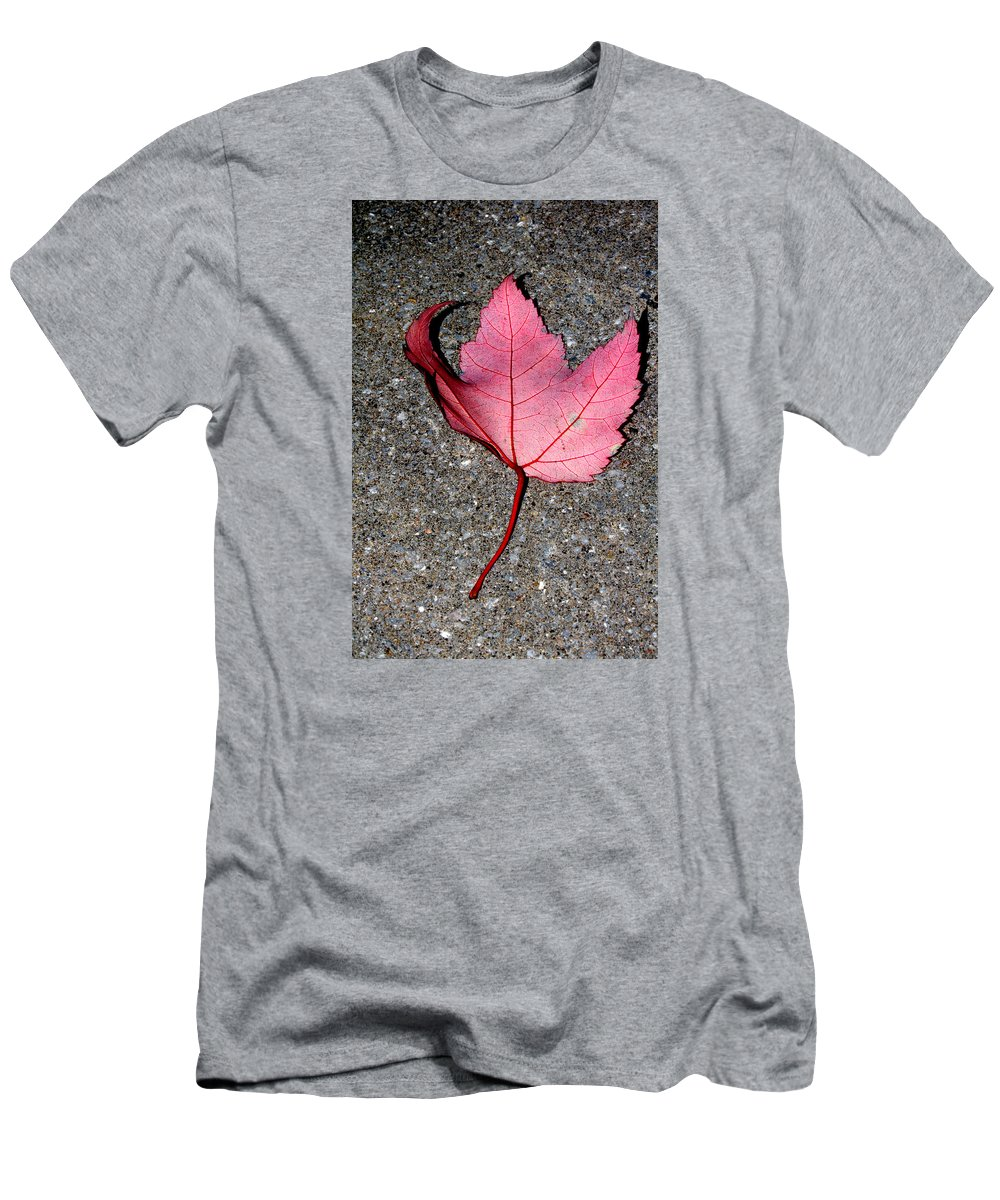 Nature Men's T-Shirt (Athletic Fit) featuring the photograph Autum Maple Leaf 2 by Robert Morin
