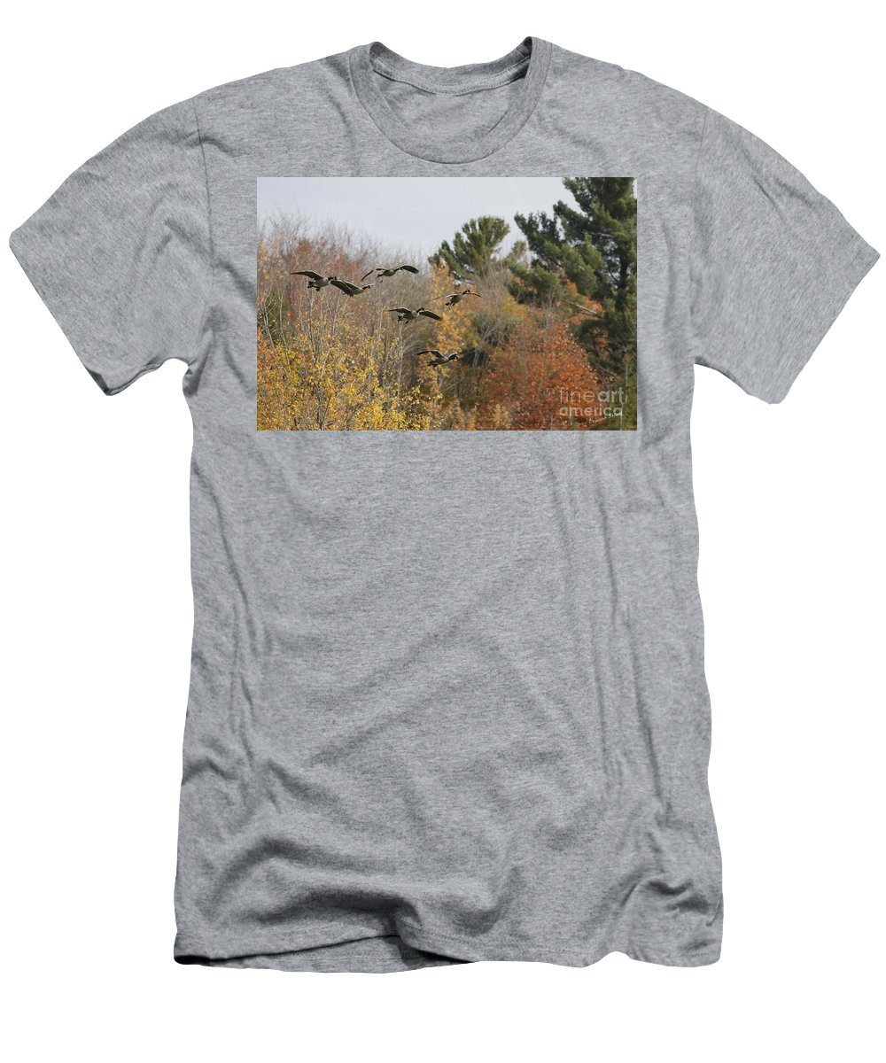 Geese Men's T-Shirt (Athletic Fit) featuring the photograph Autumn Geese by Deborah Benoit