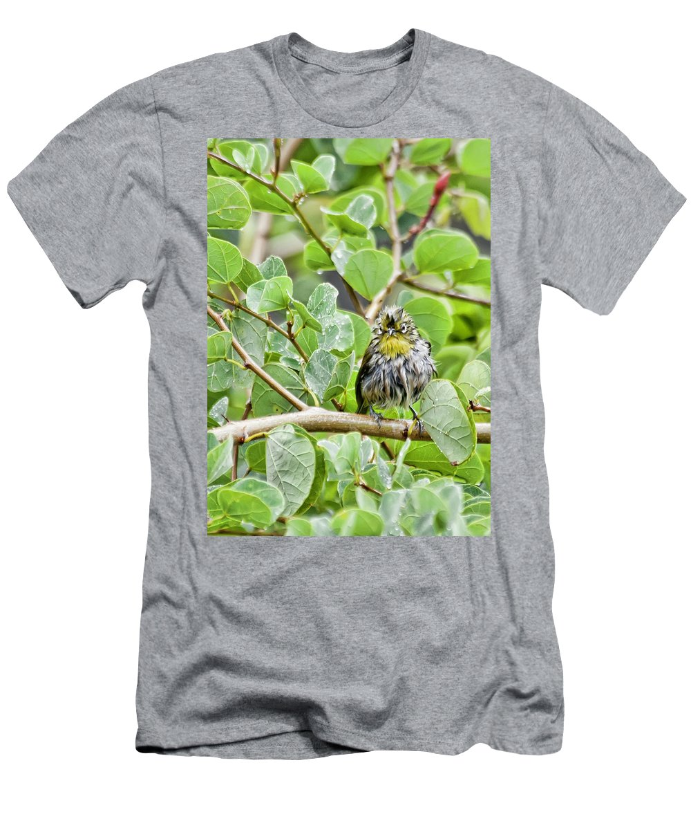 Hawaii Men's T-Shirt (Athletic Fit) featuring the photograph Bad Hair Day by Dan McManus