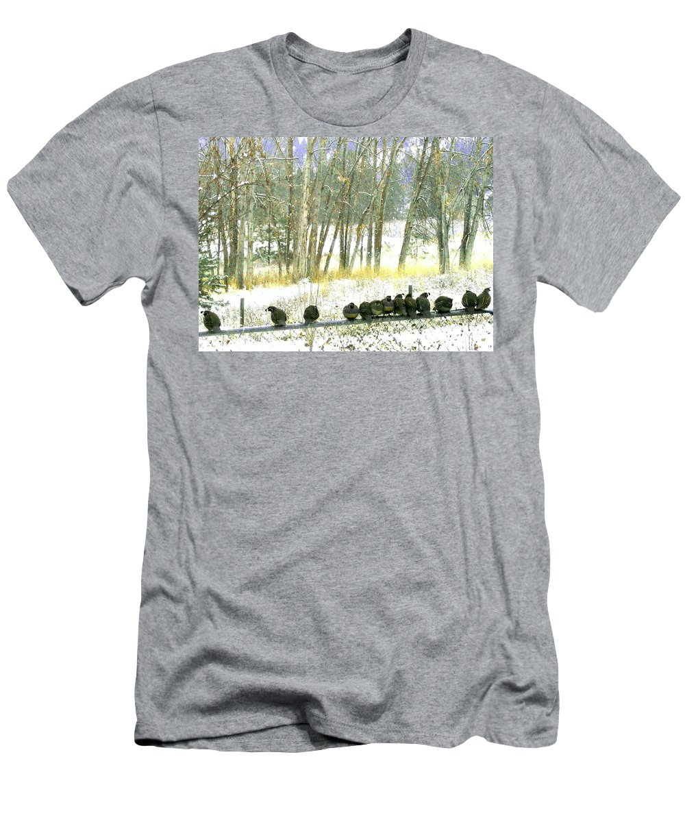 Thirteen Quail Men's T-Shirt (Athletic Fit) featuring the photograph Bakers Dozen by Will Borden