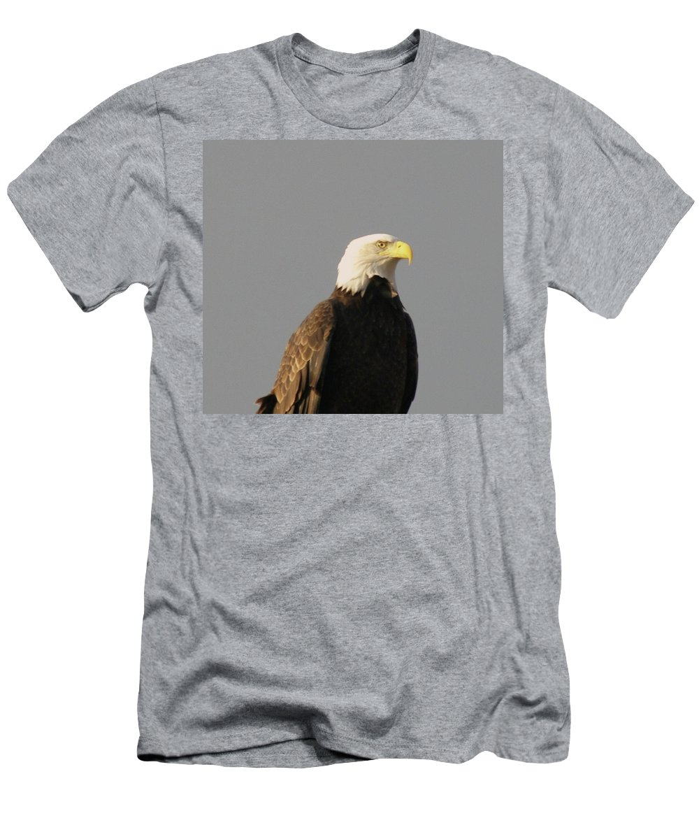 Eagles Men's T-Shirt (Athletic Fit) featuring the photograph Bald Eagle by Jeff Swan