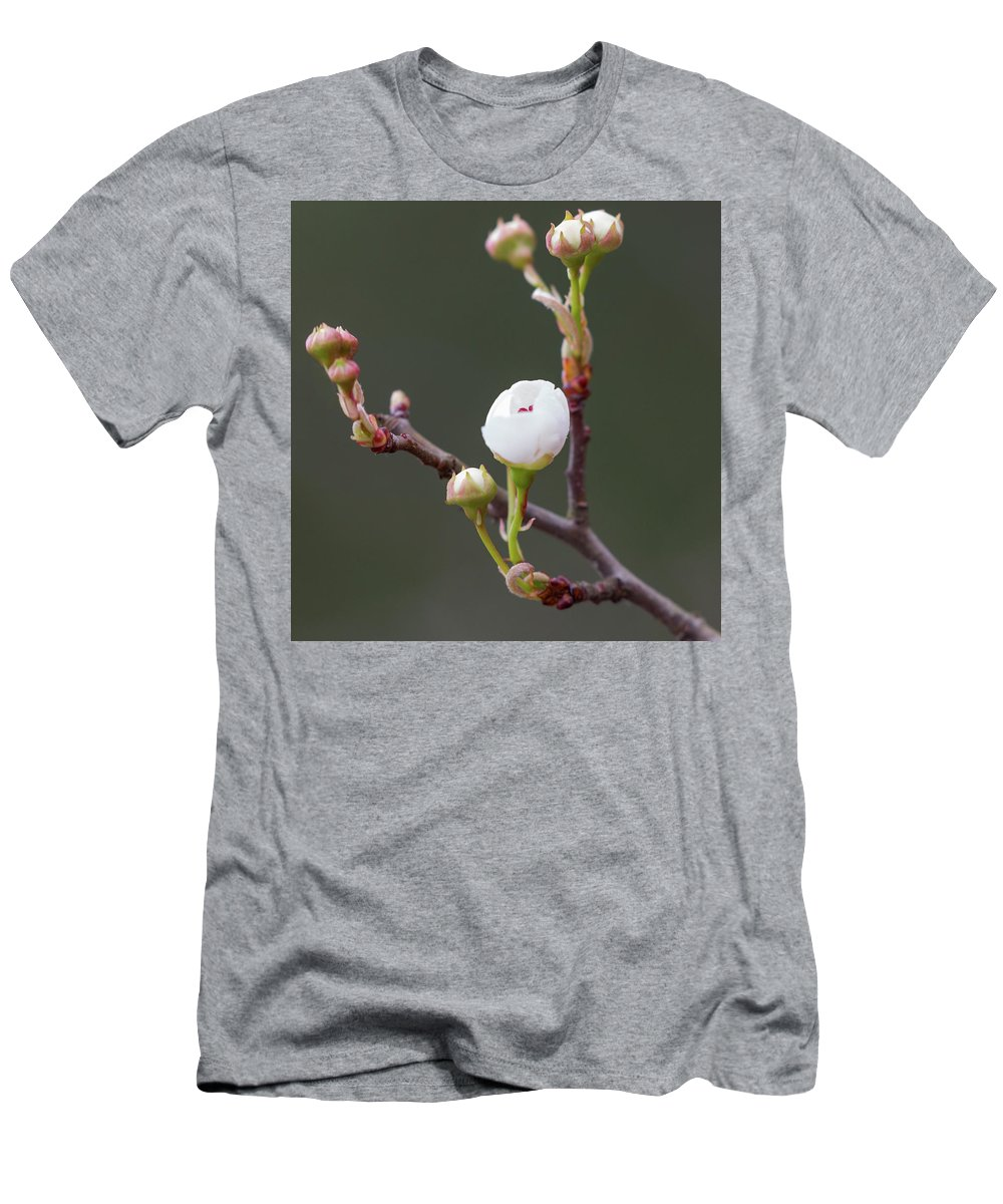 Spring Men's T-Shirt (Athletic Fit) featuring the photograph Beauty In The Emerging by Christy Cox