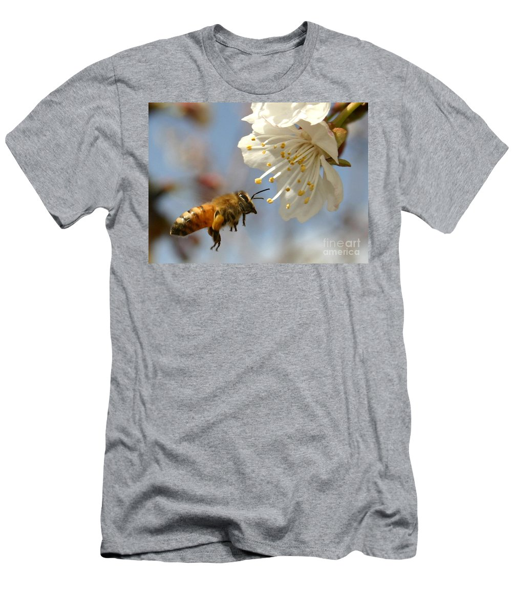 Honey Men's T-Shirt (Athletic Fit) featuring the photograph Bee And A Blossom by Danny Yanai