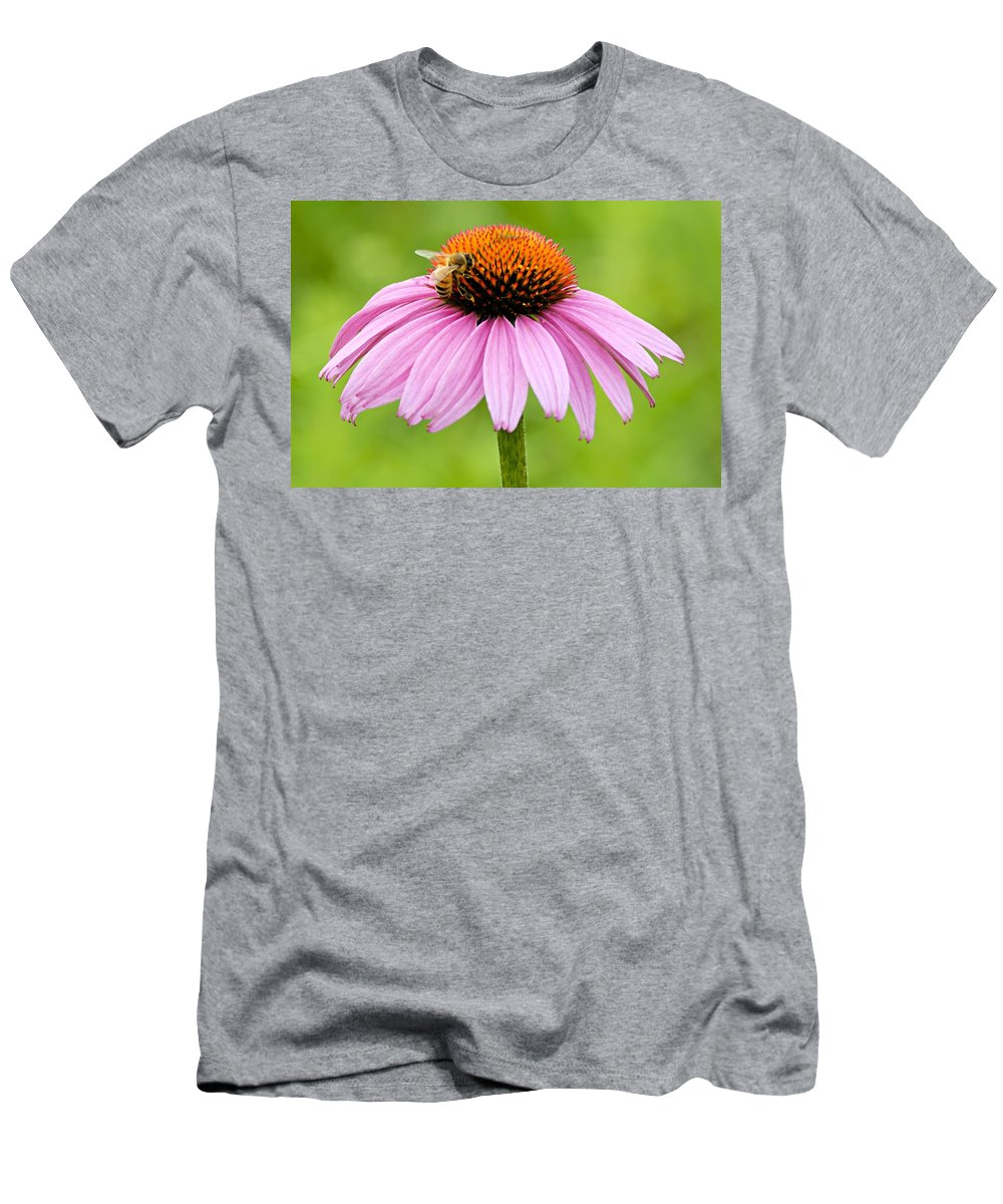 Photography Men's T-Shirt (Athletic Fit) featuring the photograph Bee On Cone Flower by Larry Ricker
