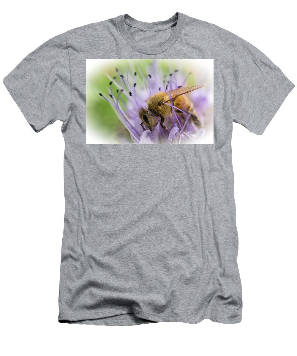 Bee Men's T-Shirt (Athletic Fit) featuring the photograph Bee On Purple by Inge Riis McDonald