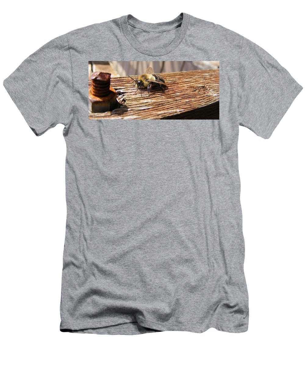 Bee Men's T-Shirt (Athletic Fit) featuring the photograph Bee-u-tiful by Ed Smith