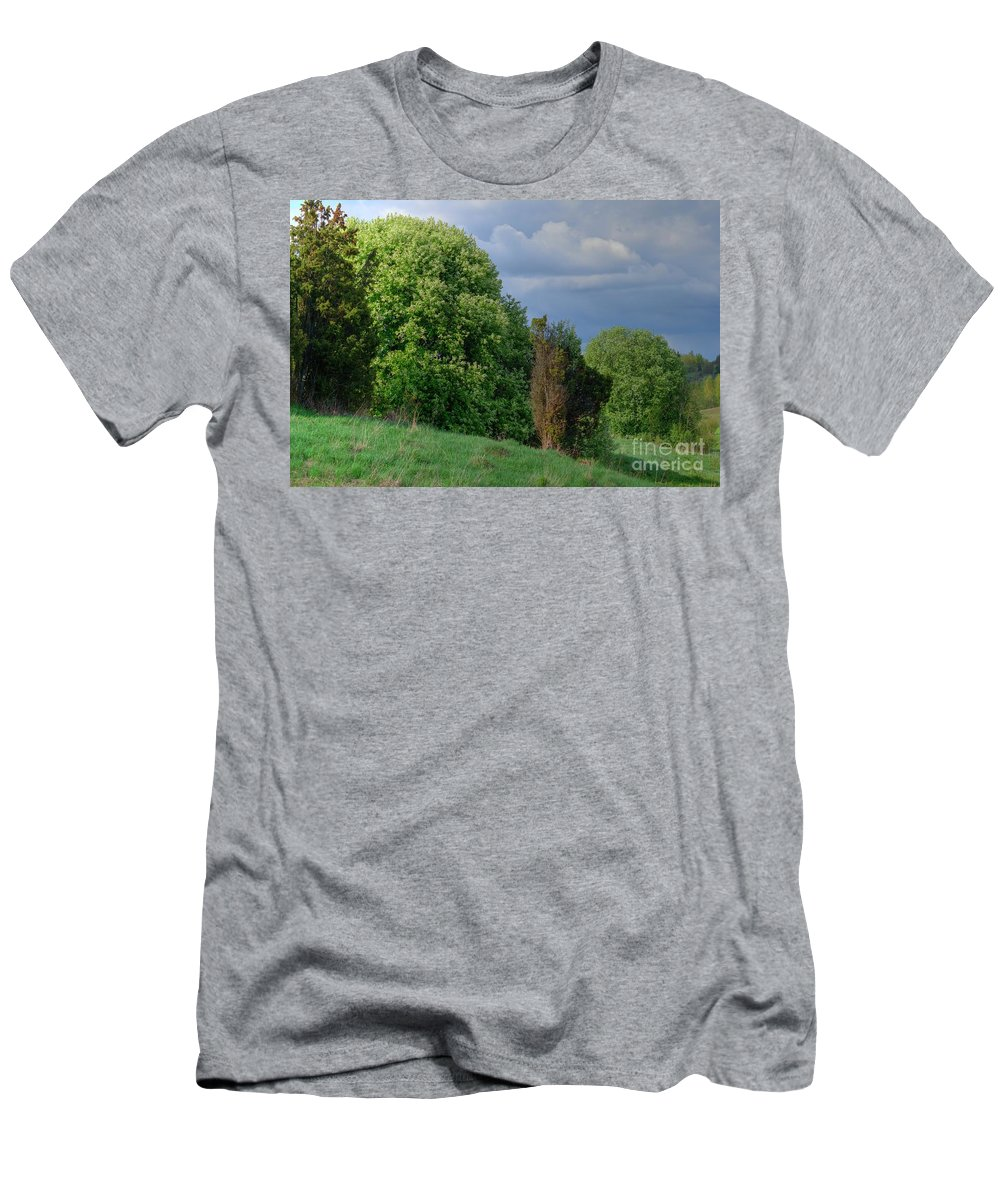 Spring Men's T-Shirt (Athletic Fit) featuring the photograph Bird Cherry Blossoms In Spring by Esko Lindell