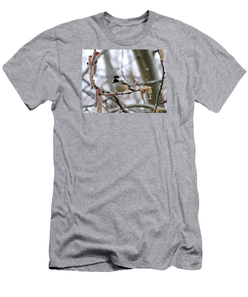 Black Men's T-Shirt (Athletic Fit) featuring the photograph Black-capped Chickadee 20120321_39a by Tina Hopkins