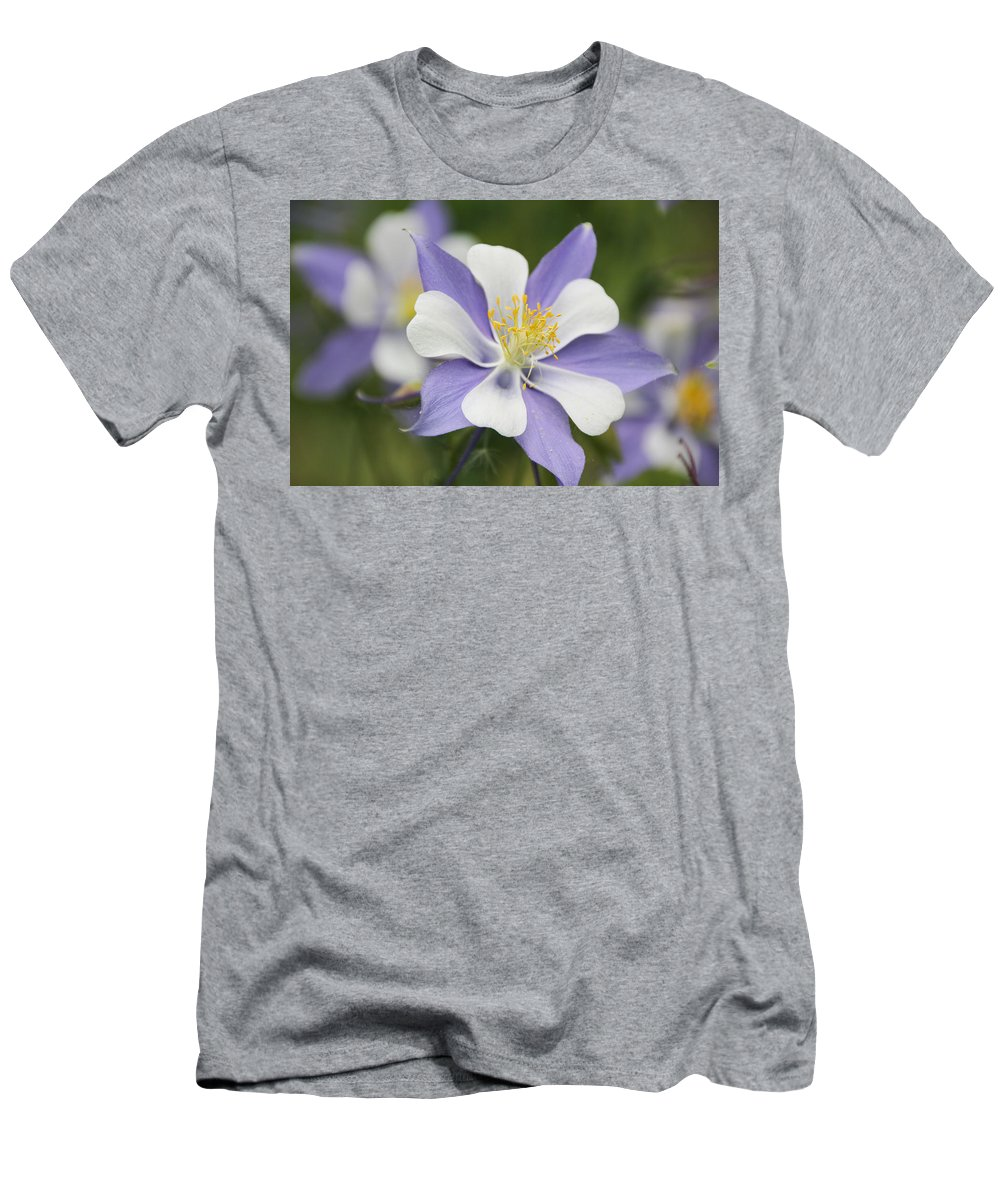 Columbine Men's T-Shirt (Athletic Fit) featuring the photograph Blooming Columbine by Becky Canterbury