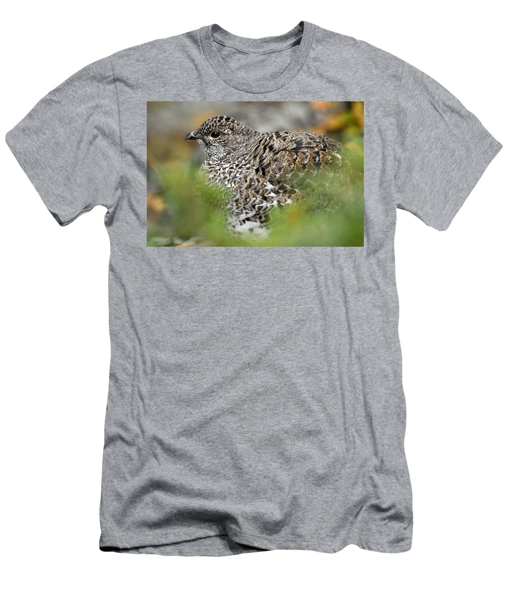 Blue Grouse Men's T-Shirt (Athletic Fit) featuring the photograph Blue Grouse Hen 1 by Larry Ricker
