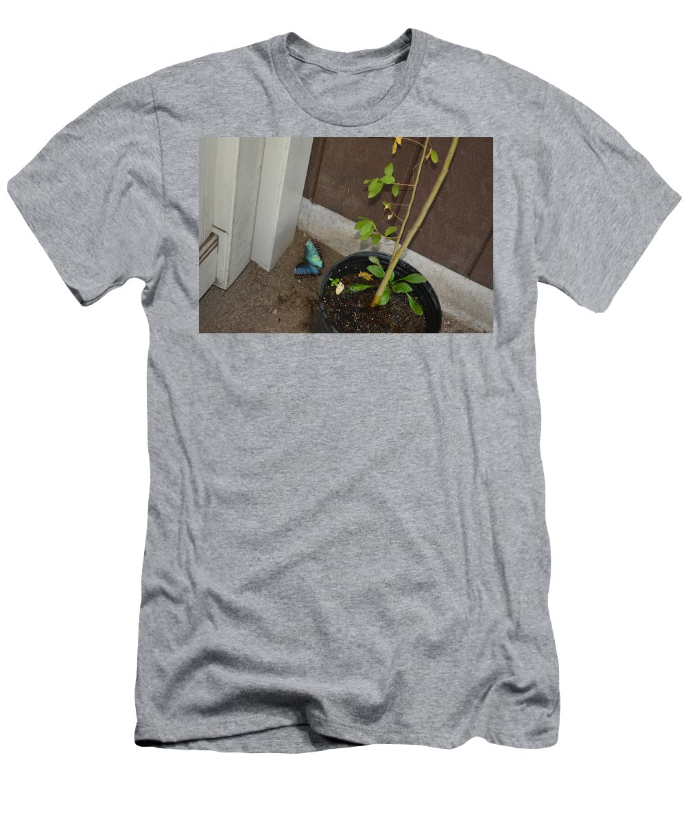 Blue Men's T-Shirt (Athletic Fit) featuring the photograph Blue Morpho Butterfly by Joe Smiga