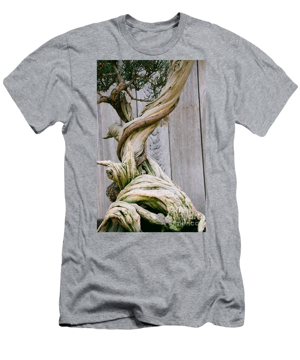 Tree Men's T-Shirt (Athletic Fit) featuring the photograph Bonsai by Dean Triolo