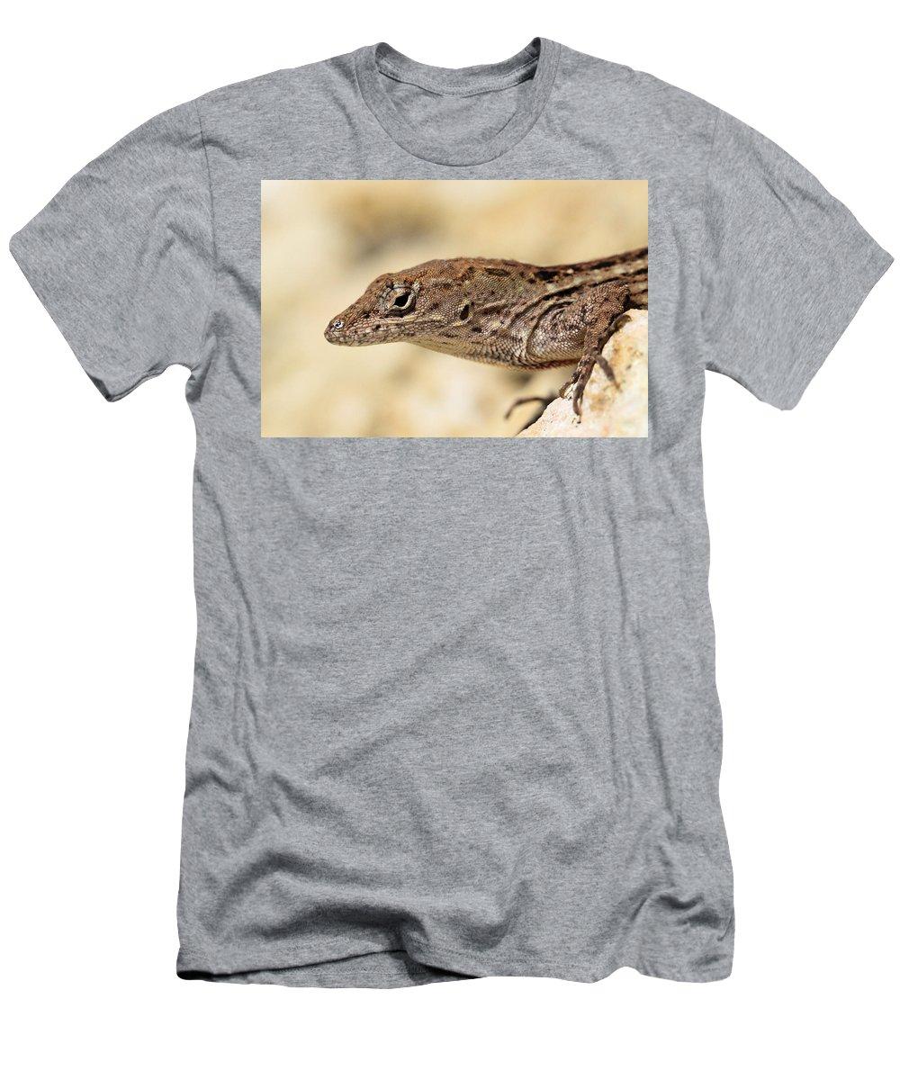 Brown Anole Men's T-Shirt (Athletic Fit) featuring the photograph Brown Anole by Doris Potter