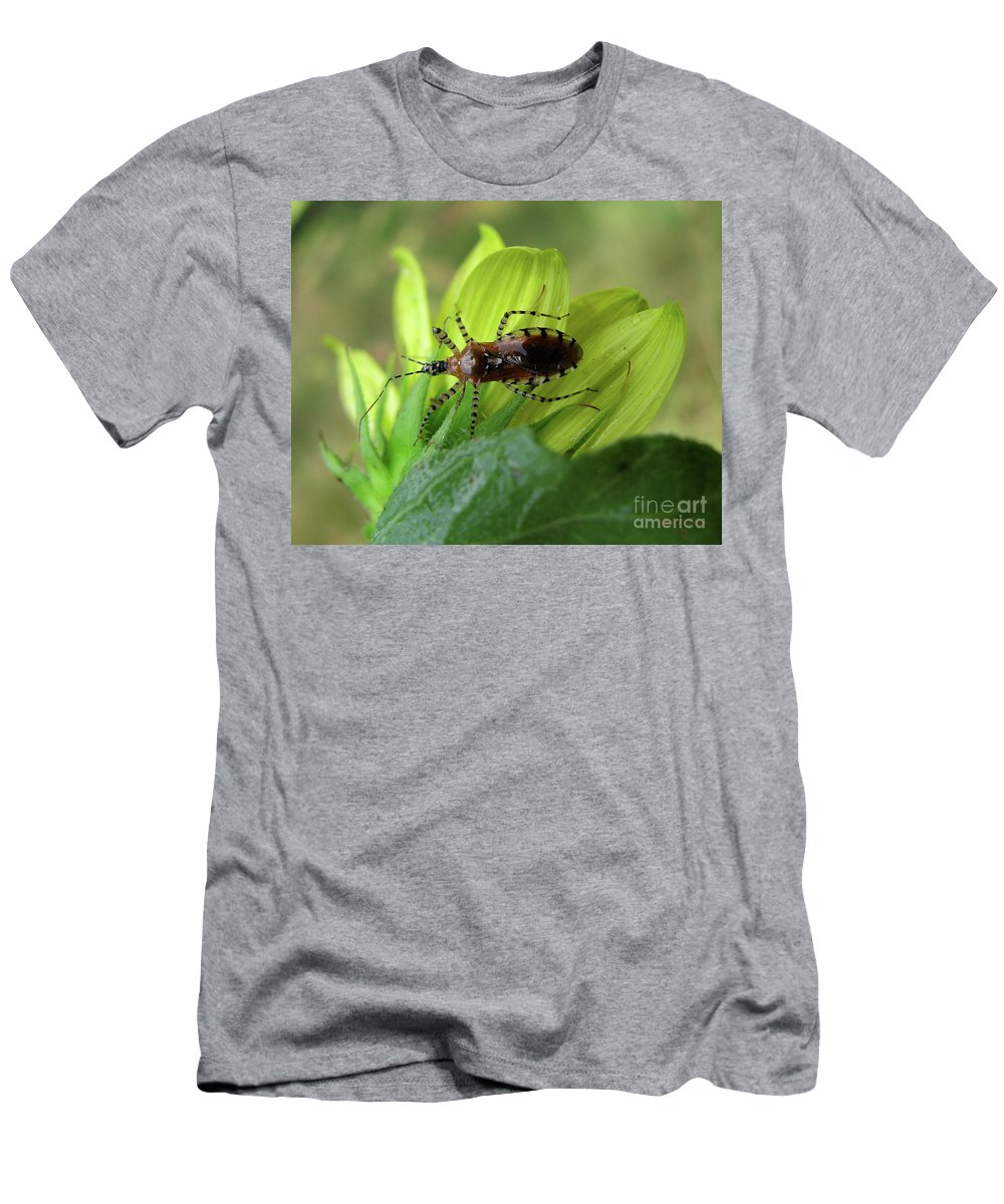 Insect Men's T-Shirt (Athletic Fit) featuring the photograph Brown Insect by Donna Brown
