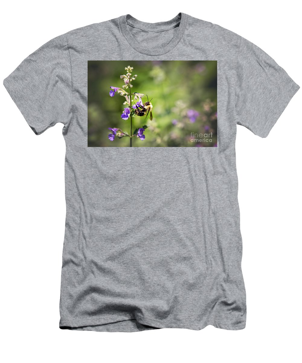 Bee Men's T-Shirt (Athletic Fit) featuring the photograph Bumblebee by Sharon McConnell