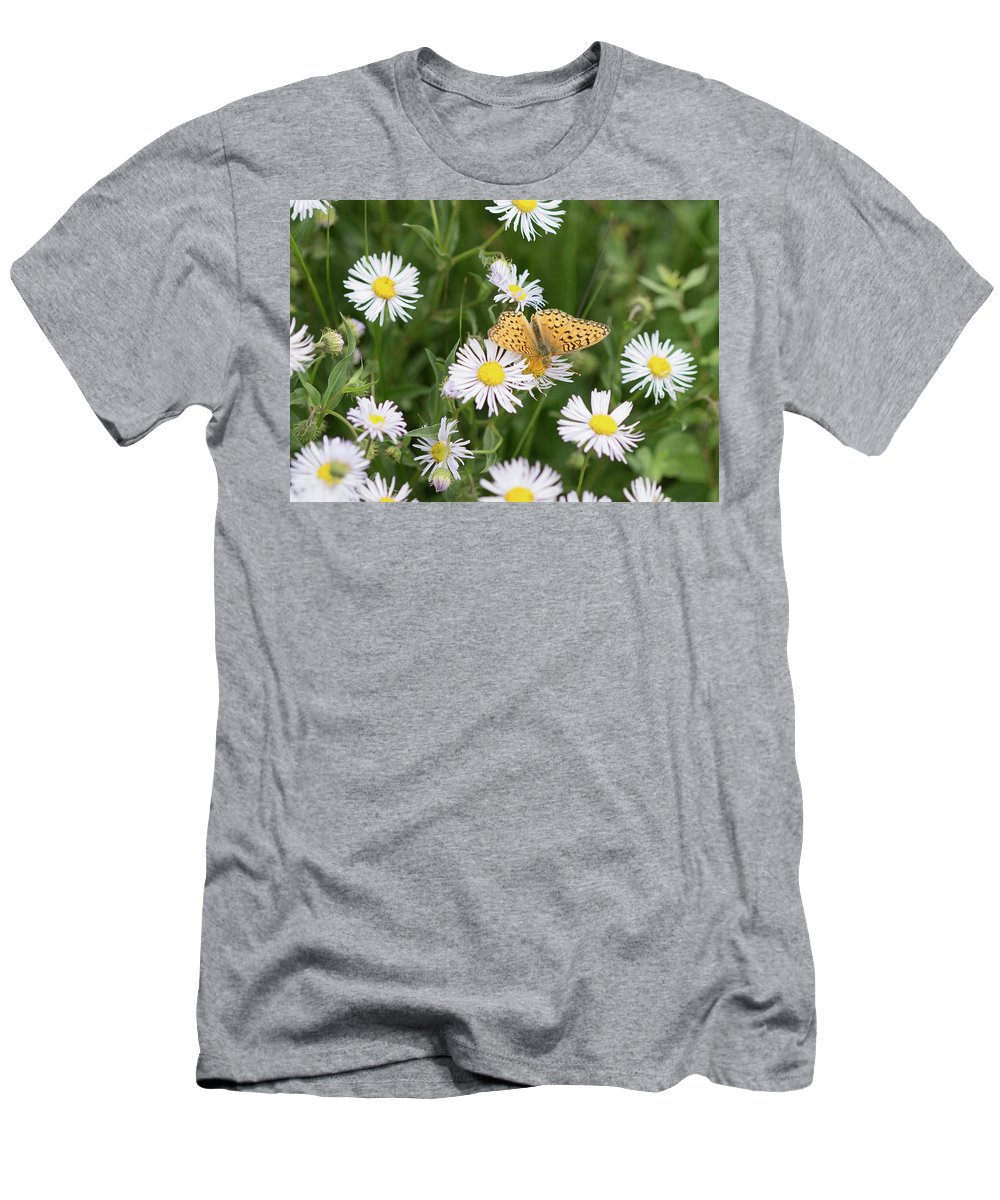 Crested Butte Men's T-Shirt (Athletic Fit) featuring the photograph Butterfly On Fleabane by Meagan Watson