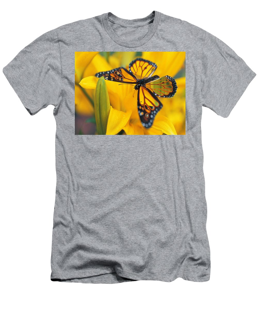 Butterfly Men's T-Shirt (Athletic Fit) featuring the digital art Butterfly by Tim Allen