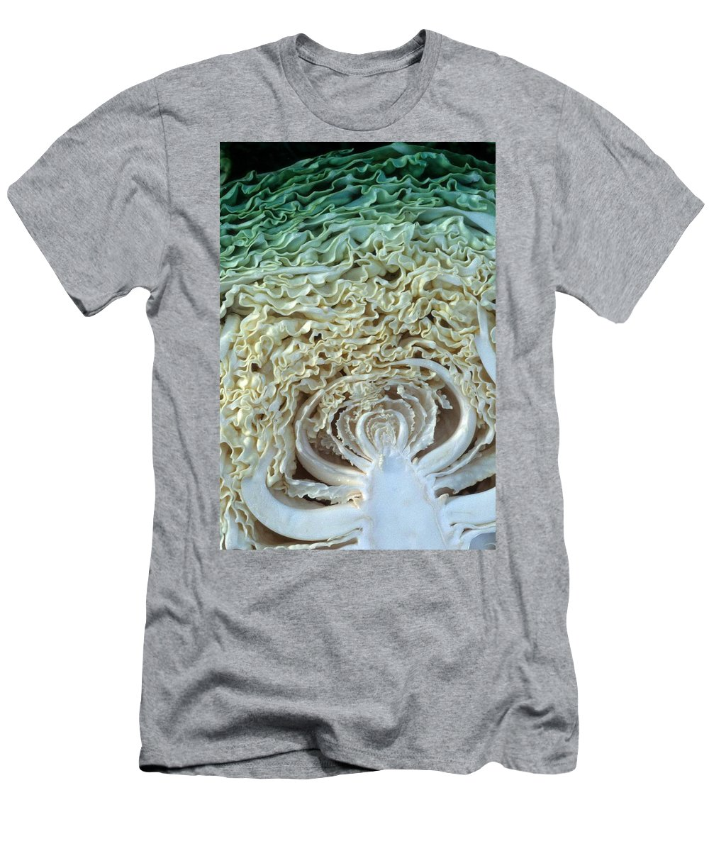 Cabbage Men's T-Shirt (Athletic Fit) featuring the photograph Cabbage Universe by Laurie Paci