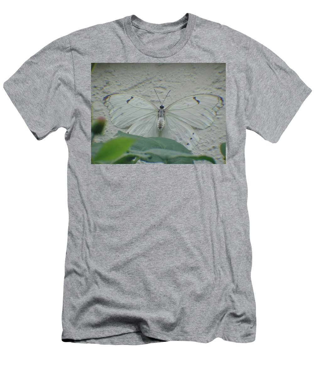 Butterfly Men's T-Shirt (Athletic Fit) featuring the photograph Can You See Me by Cathi Abbiss Crane