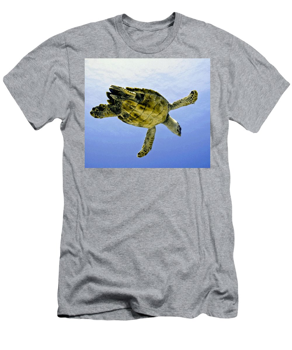 Turtle Men's T-Shirt (Athletic Fit) featuring the photograph Caribbean Sea Turtle by Amy McDaniel