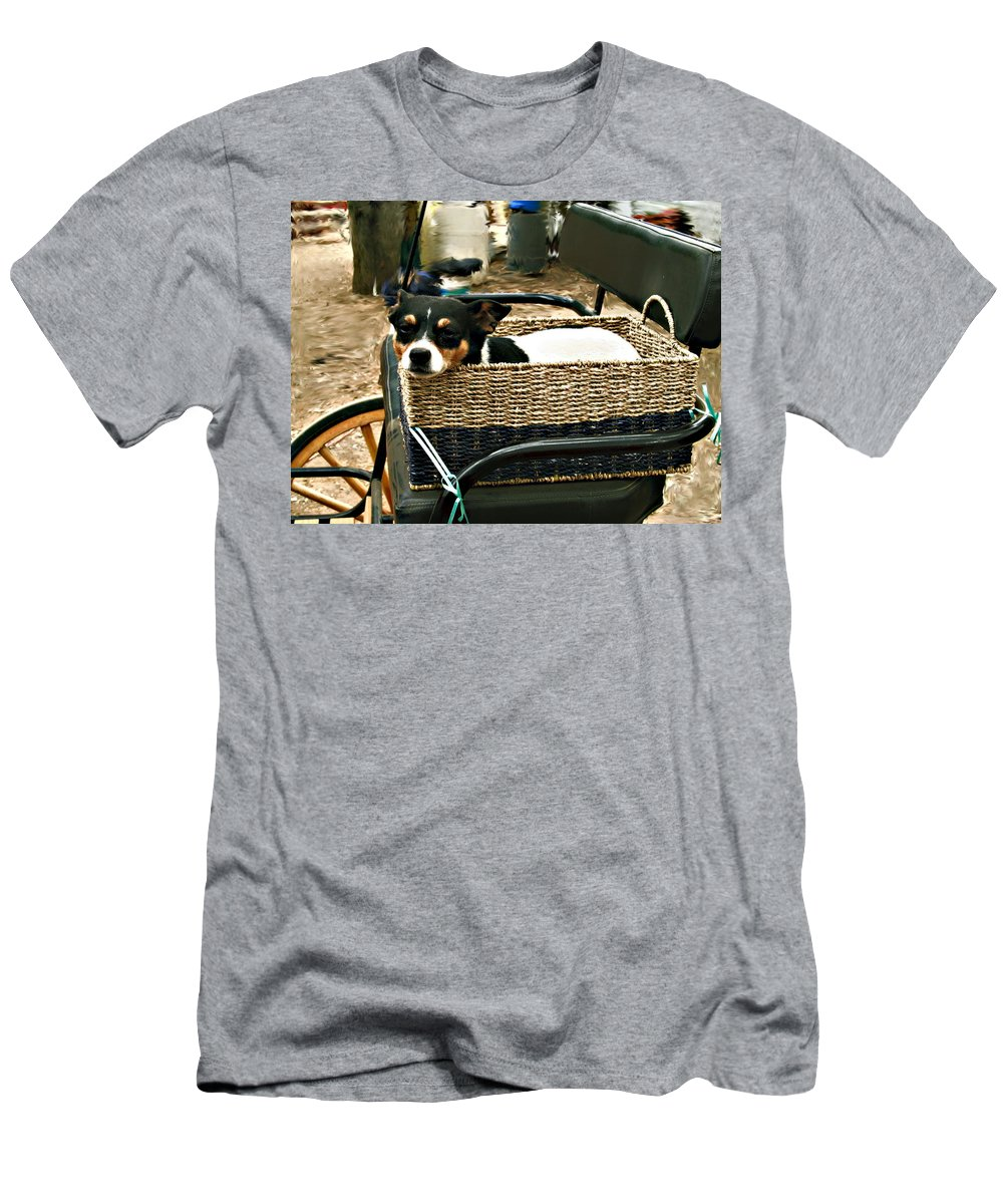 Dog Men's T-Shirt (Athletic Fit) featuring the photograph Carriage Dog by Amie Ebert
