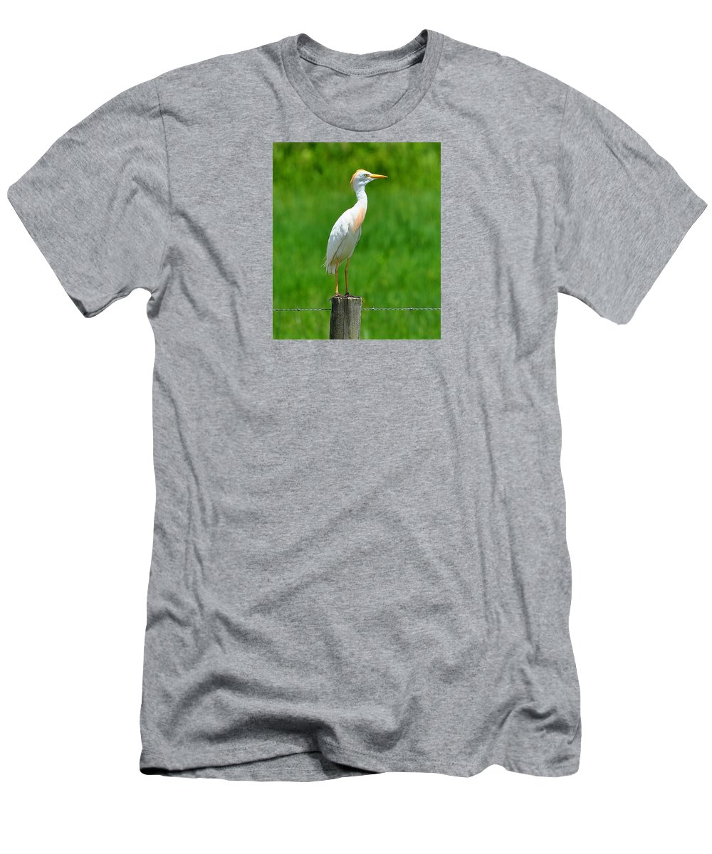 Cattle Egret Men's T-Shirt (Athletic Fit) featuring the photograph Cattle Egret On Post by Amy Spear