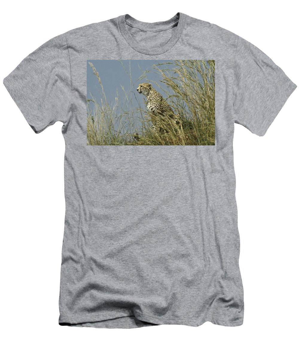 Africa Men's T-Shirt (Athletic Fit) featuring the photograph Cheetah Lookout by Michele Burgess