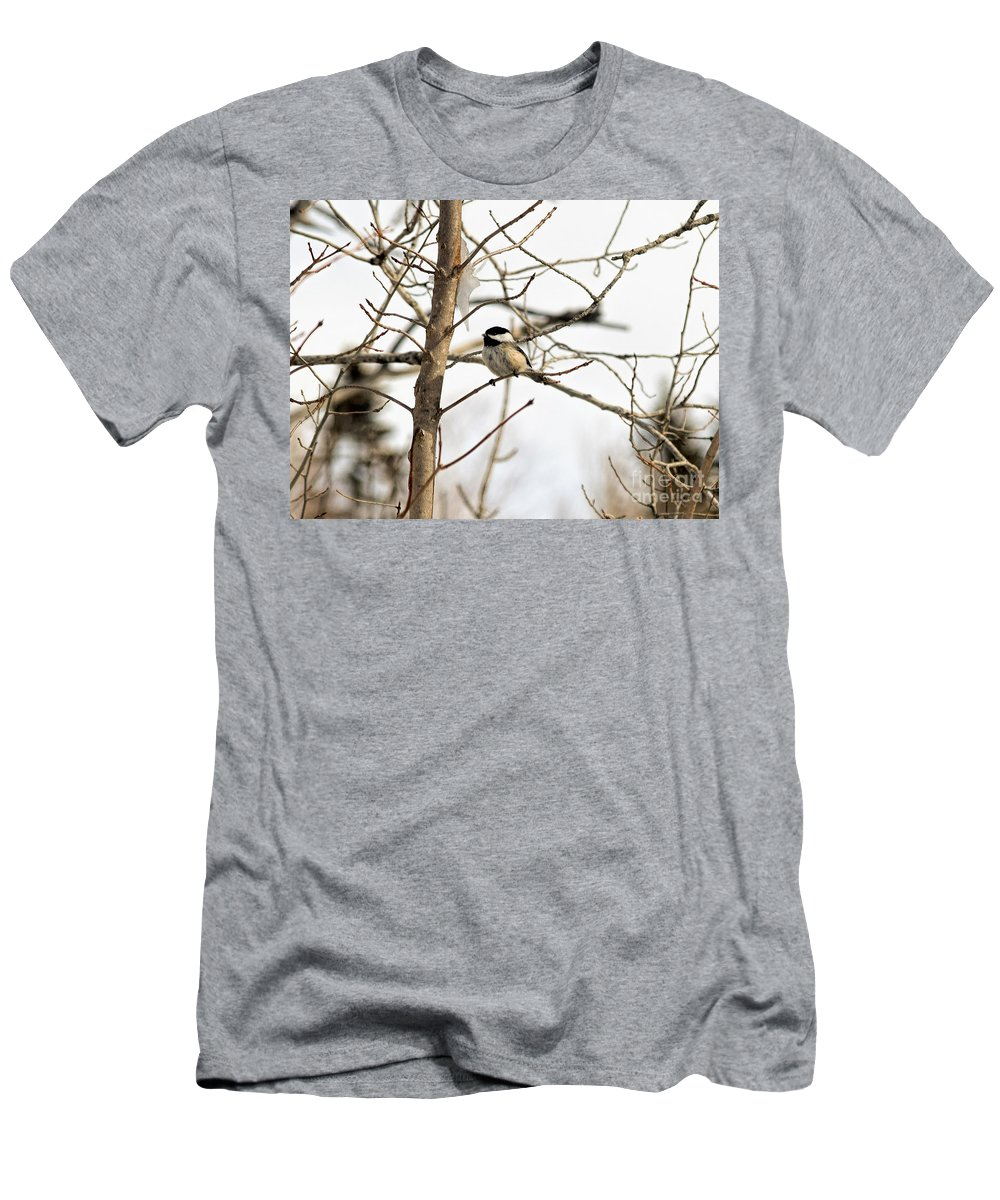 Black-capped Chickadee Men's T-Shirt (Athletic Fit) featuring the photograph Chickadee by William Tasker