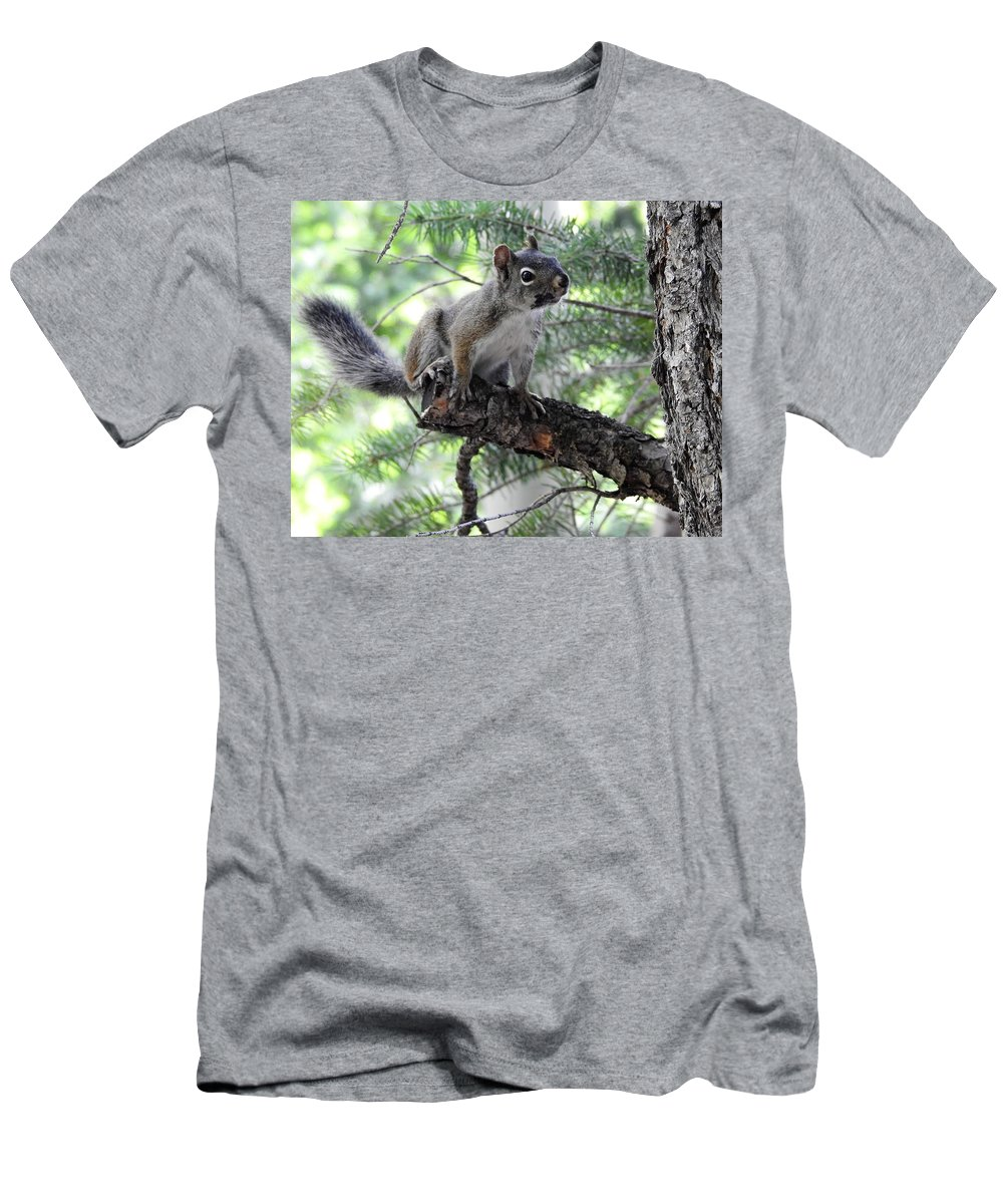 Chickaree Men's T-Shirt (Athletic Fit) featuring the photograph Chickaree On The Tree by Nicole Belvill