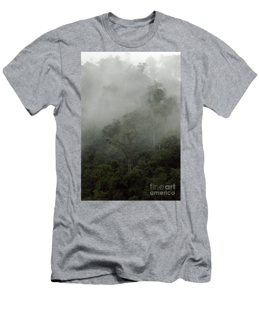 Rainforest Men's T-Shirt (Athletic Fit) featuring the photograph Cloud Forest by Kathy McClure