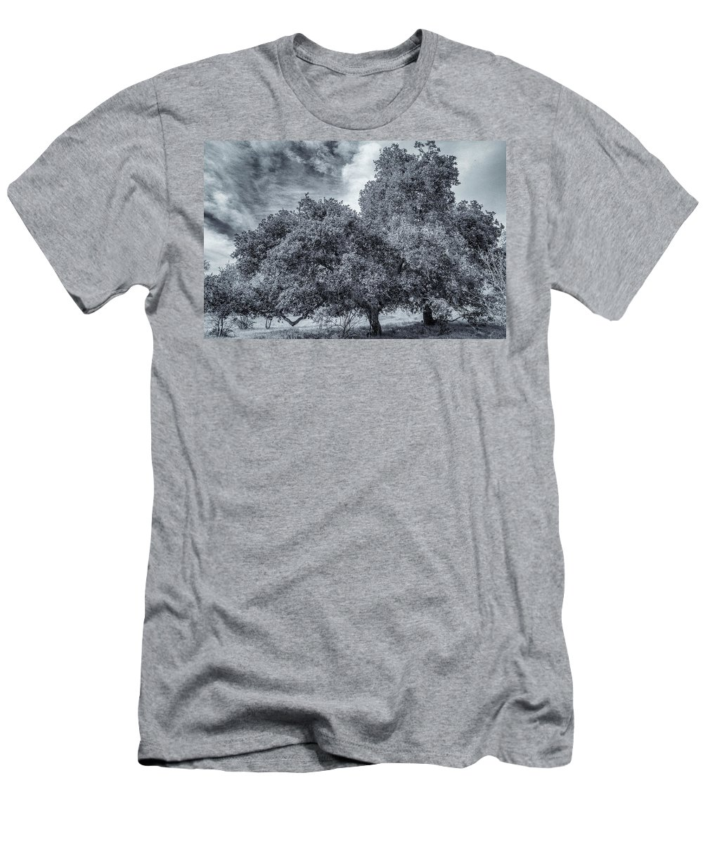 Almaden Men's T-Shirt (Athletic Fit) featuring the photograph Coast Live Oak Monochrome by Randy Herring