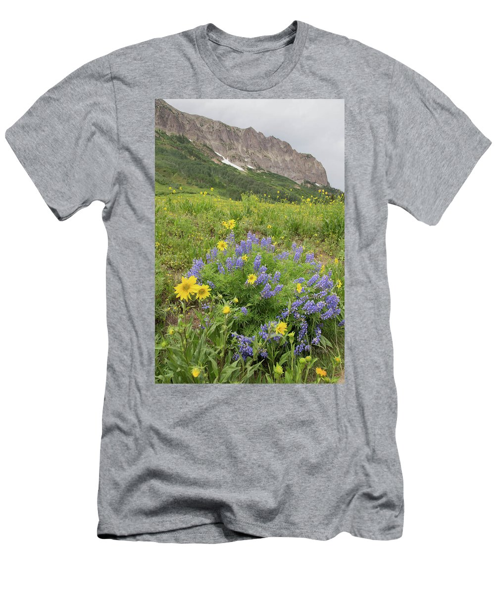 Crested Butte Men's T-Shirt (Athletic Fit) featuring the photograph Colorado Color #4 by Meagan Watson