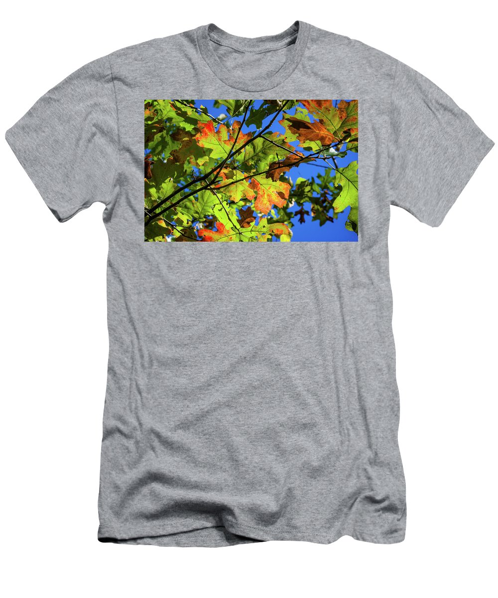 Leaves Men's T-Shirt (Athletic Fit) featuring the photograph Colorful Leaves by Mike Cox