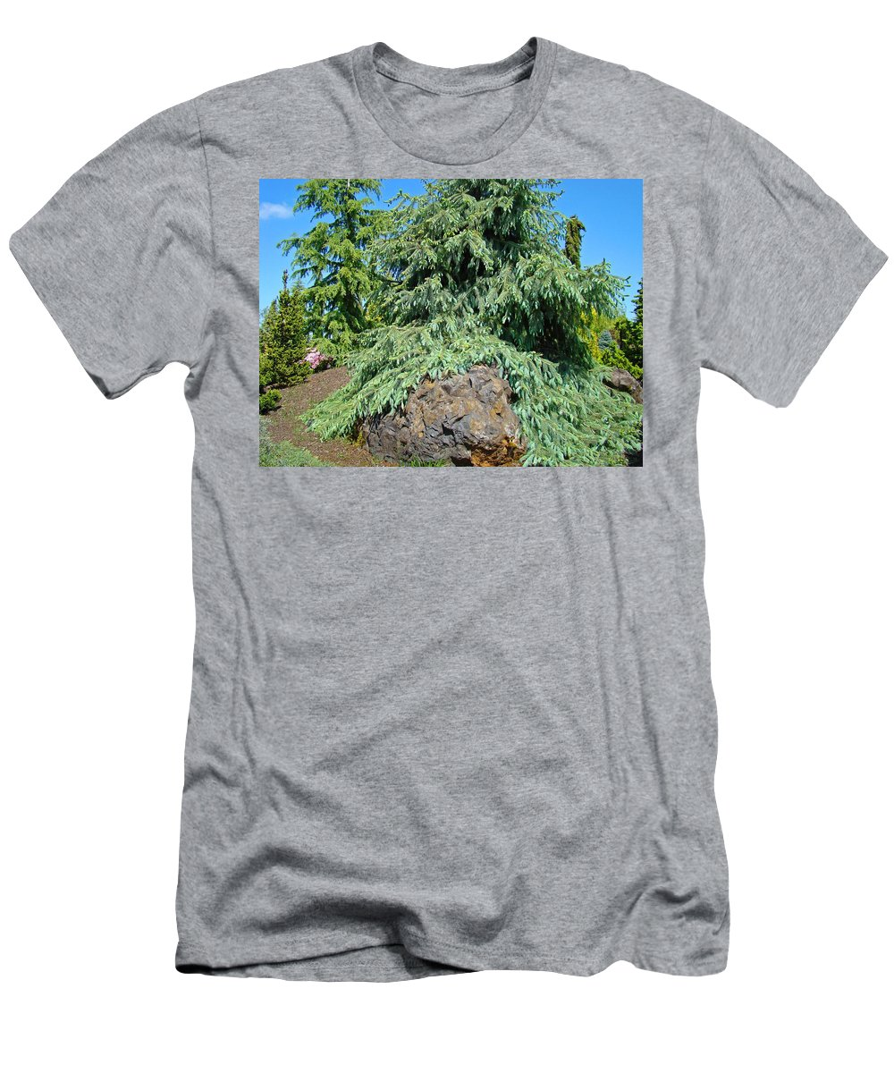 Pine Men's T-Shirt (Athletic Fit) featuring the photograph Conifer Tree Art Prints Pine Trees Botanical Nature Baslee Troutman by Baslee Troutman