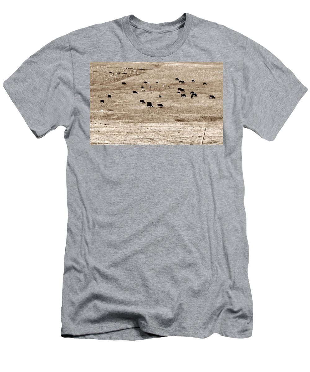 Cows T-Shirt featuring the photograph Cow Droppings by Susan Kinney