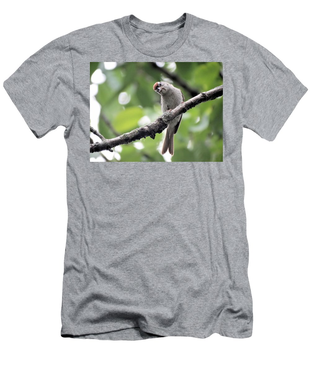 Bird Men's T-Shirt (Athletic Fit) featuring the photograph Curiosity by Theresa Campbell
