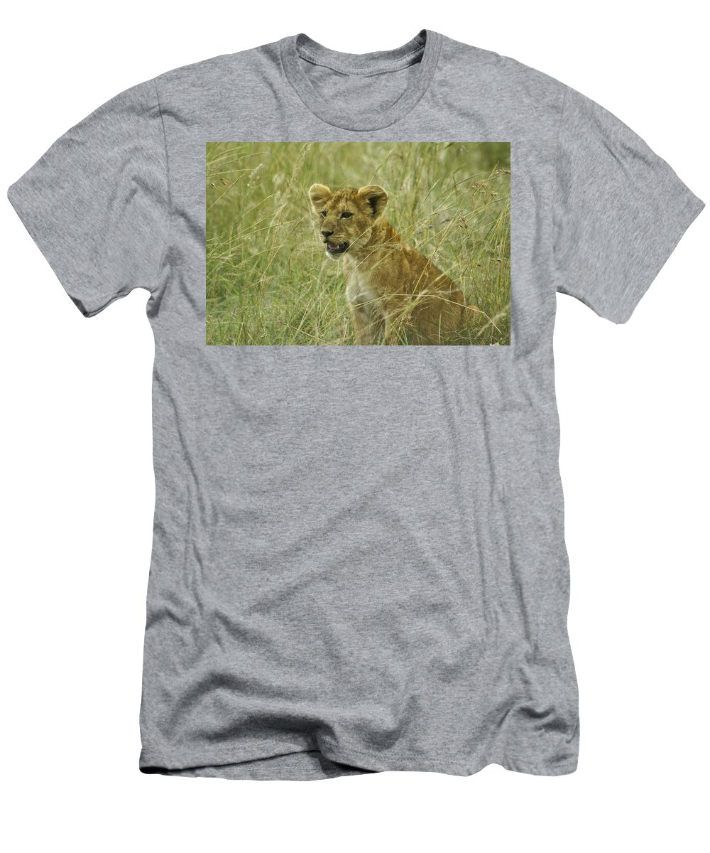 Africa Men's T-Shirt (Athletic Fit) featuring the photograph Curious Cub by Michele Burgess