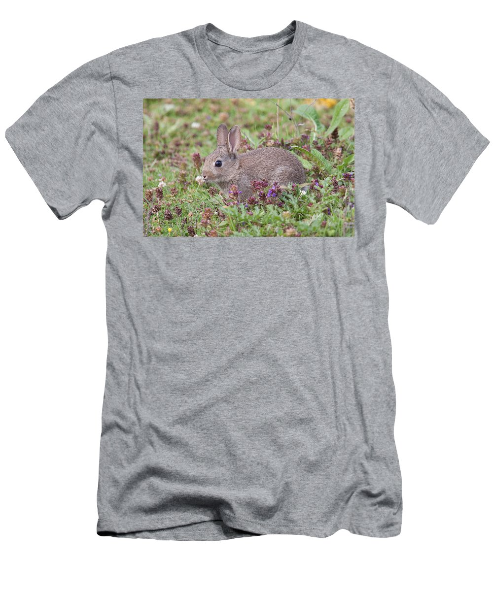 Wildlife Men's T-Shirt (Athletic Fit) featuring the photograph Cute Baby Bunny by Bob Kemp