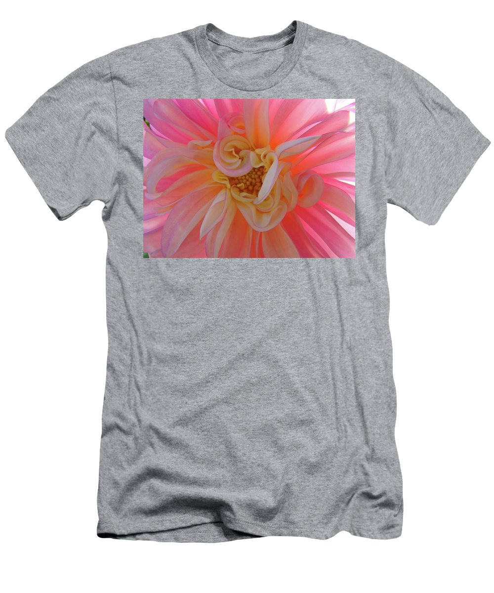 Dahlia Men's T-Shirt (Athletic Fit) featuring the photograph Dahlia Flower Sunlit Pink White Dahlia Garden Floral by Baslee Troutman