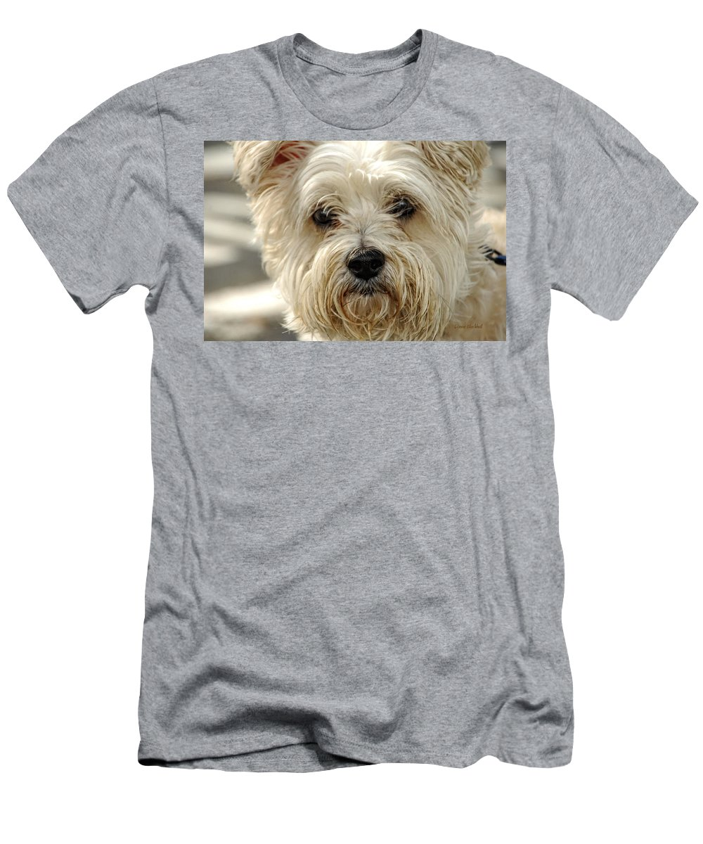 Dog Men's T-Shirt (Athletic Fit) featuring the photograph Definition Of Cute by Donna Blackhall