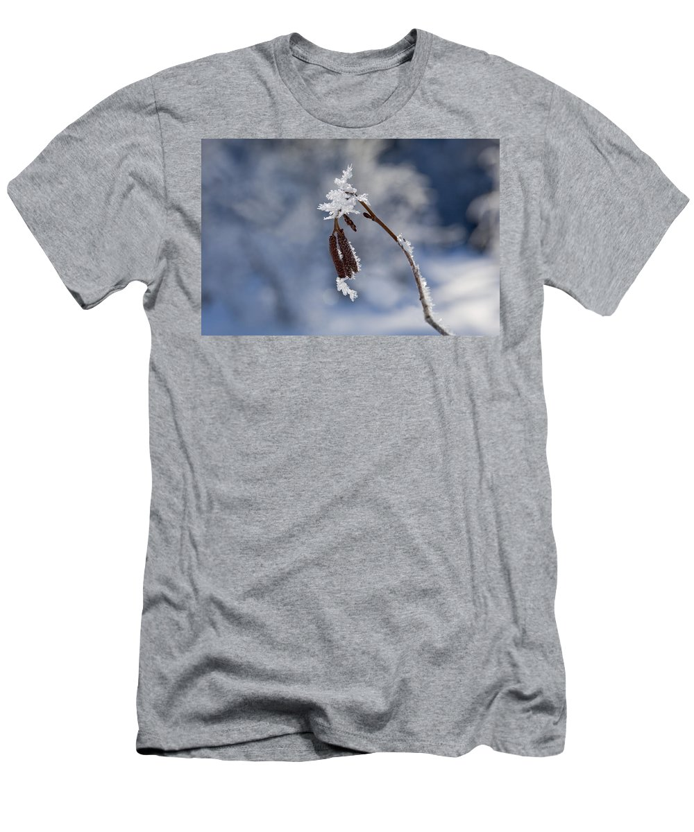 Frost Men's T-Shirt (Athletic Fit) featuring the photograph Delicate Winter by Mike Dawson